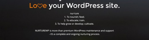 nurturewp-wordpress-support