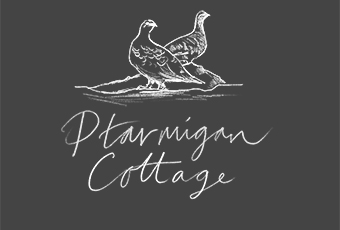 Ptarmigan Logo, Featured Image